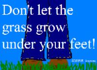 grow-2