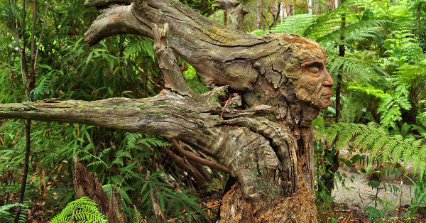 Wood_Sculptures_featured